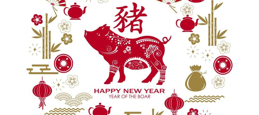 happy-chinese-new-year-2019-card-with-pig-chinese-vector-20423123  копия